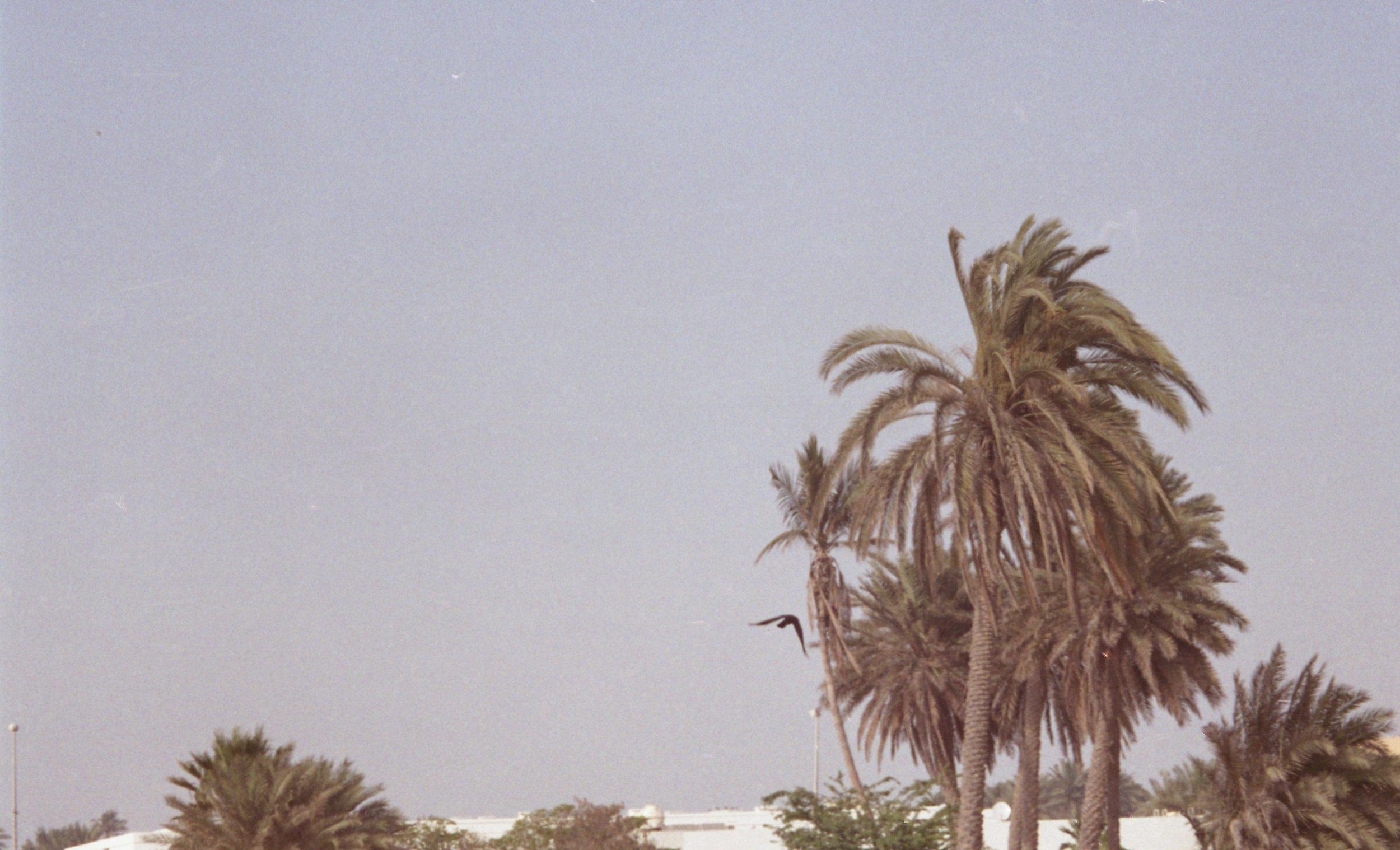 hamriya027.jpg