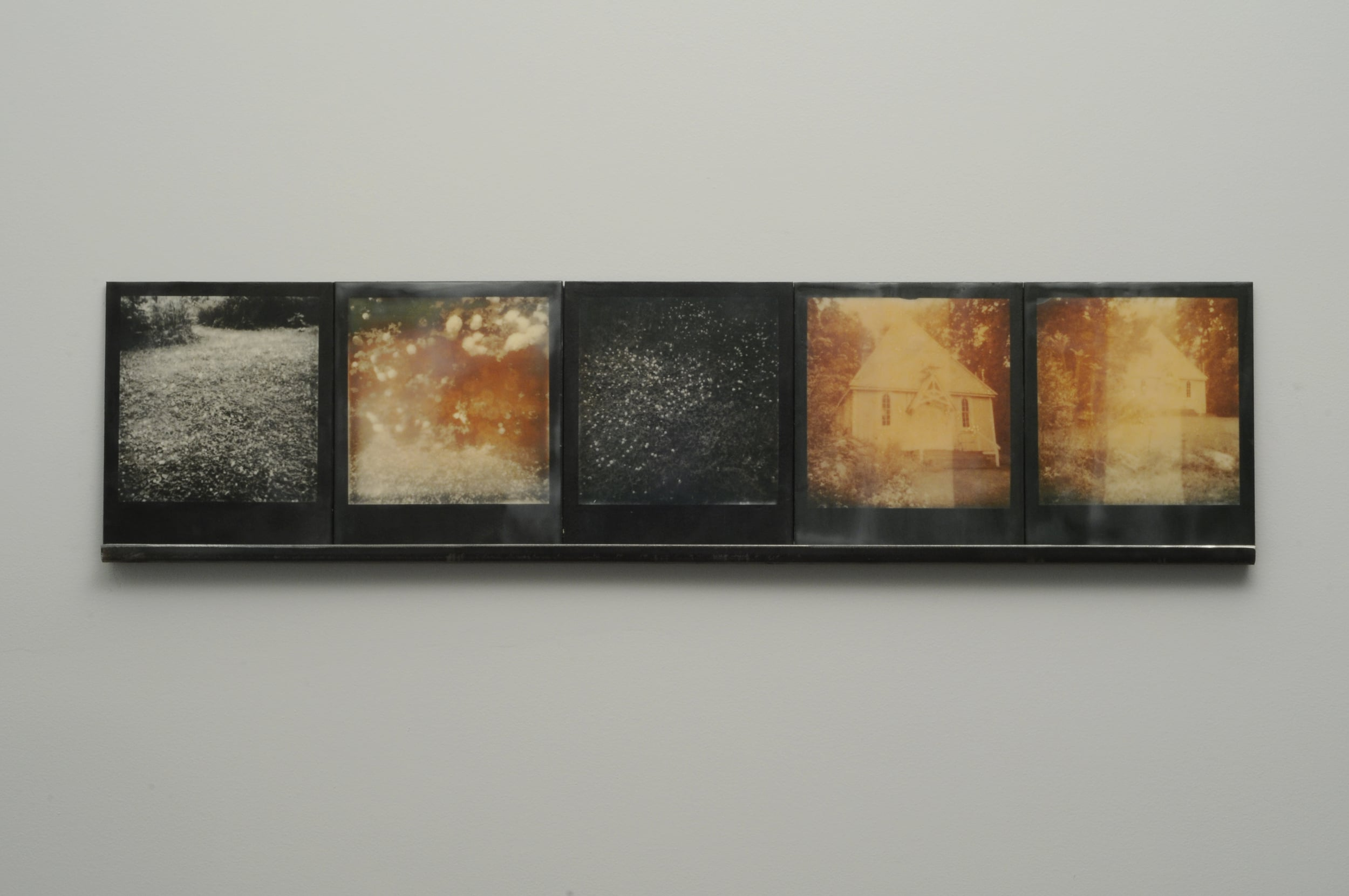 """Clove  , 2015, pigment prints on cotton and panel with encaustic medium and steel shelf, 8.5"""" x 35.25"""" variable edition of 2 and 1 artist proof"""