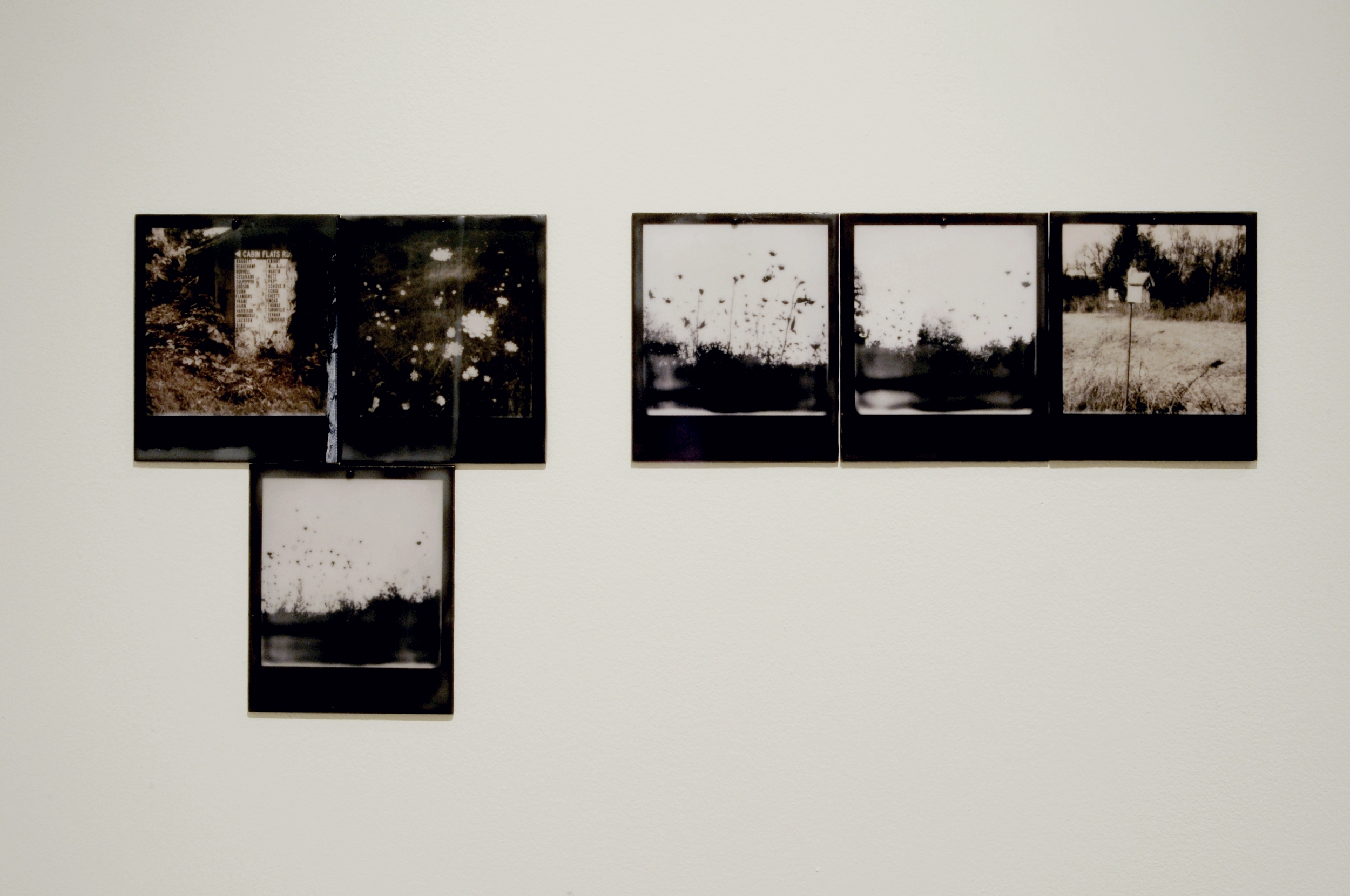 Reverse Migration  , part 2 of 6, pigment prints on painted panel with encaustic medium, dimensions variable, 2014-15