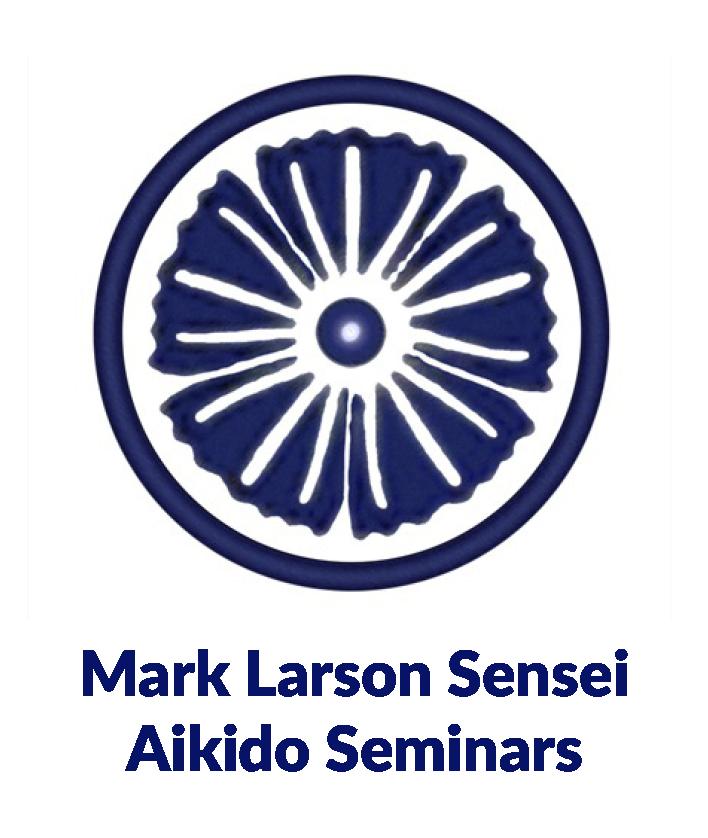 aikido-seminars-mark-larson.png
