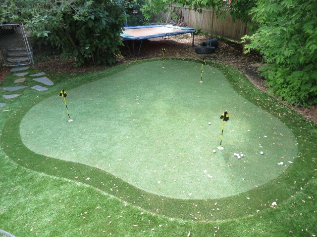 back yard green 001 Bent Grass Rymar.JPG