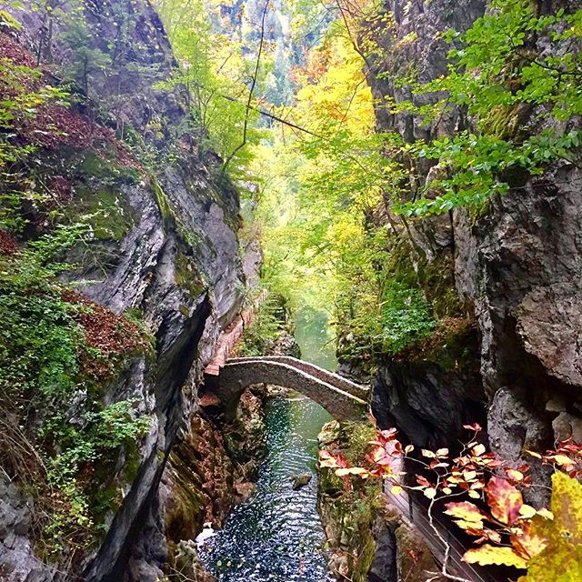 When your hike looks like something out of a fairytale. 🧚‍♀️