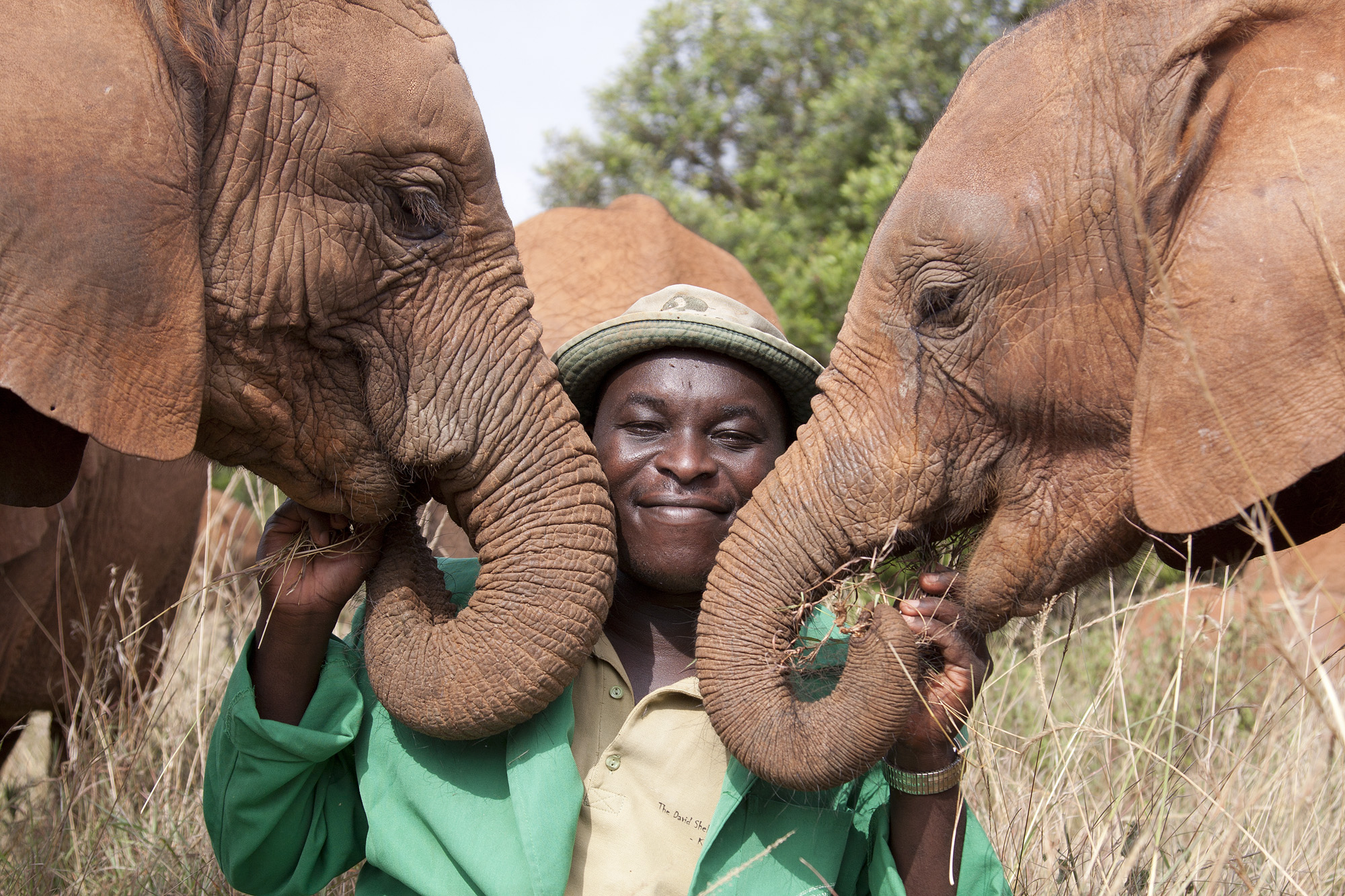 the march helps fund such charities as The David sheldrick wildlife trust to save elephant calves abandoned due to poaching.