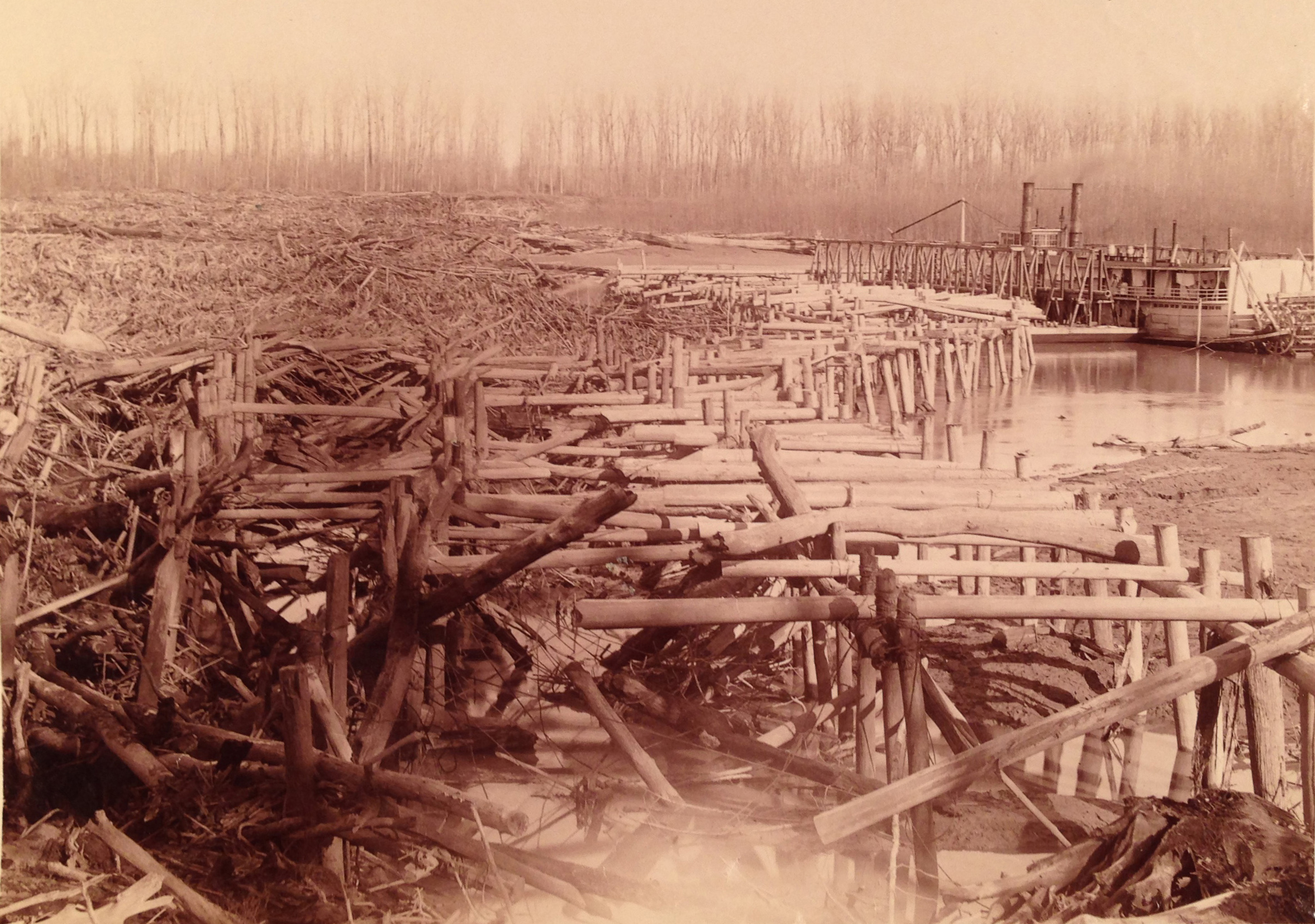 1880s photograph of cottonwood snag-catchers built by the Corps of Engineers on the Mississippi River near Plum Point to catch debris drifting downstream. (Photographs and Prints Division, National Archives and Records Administration, College Park, Maryland)