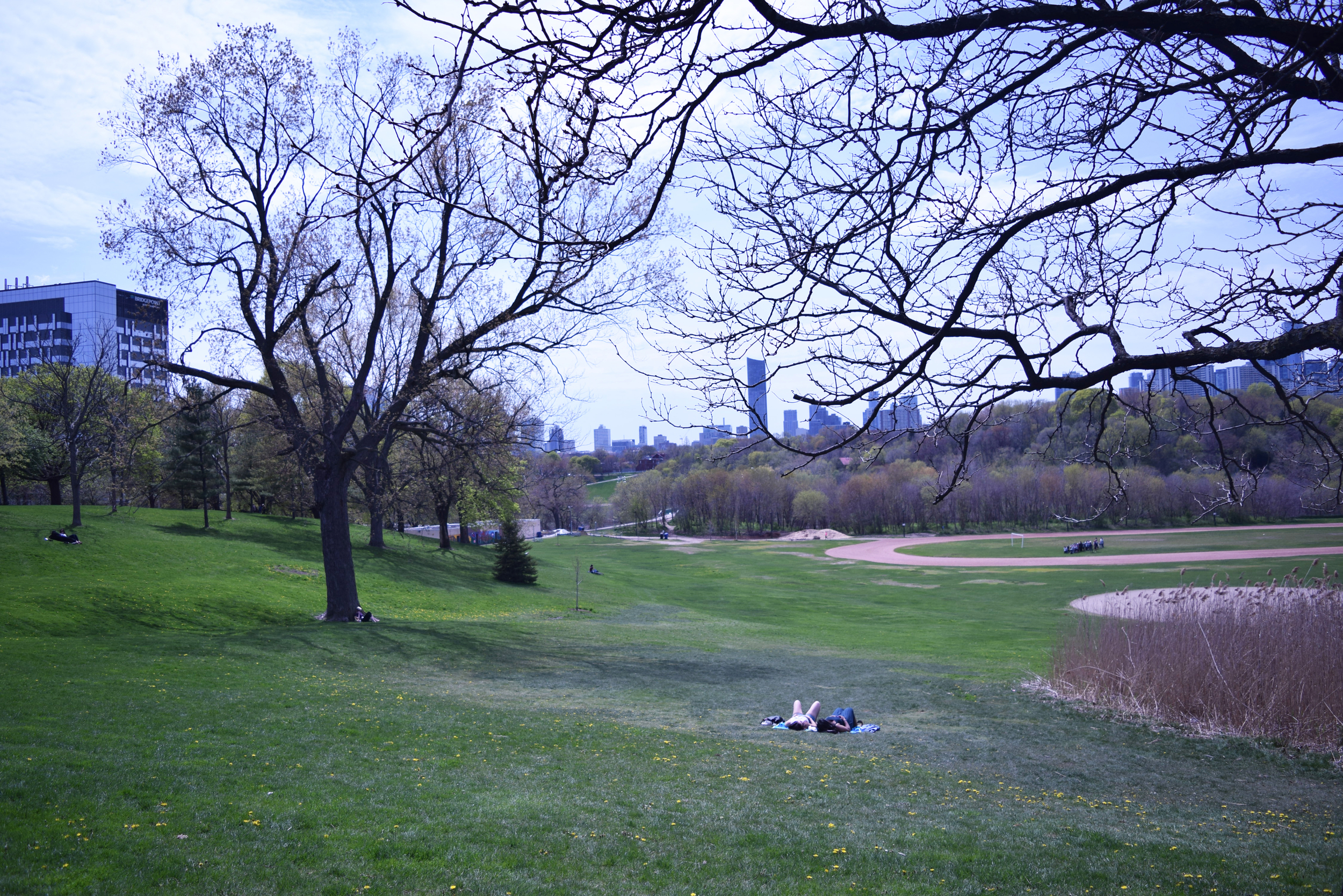 Riverdale Park East with Riverdale Park West Beyond (photograph by John Severino)