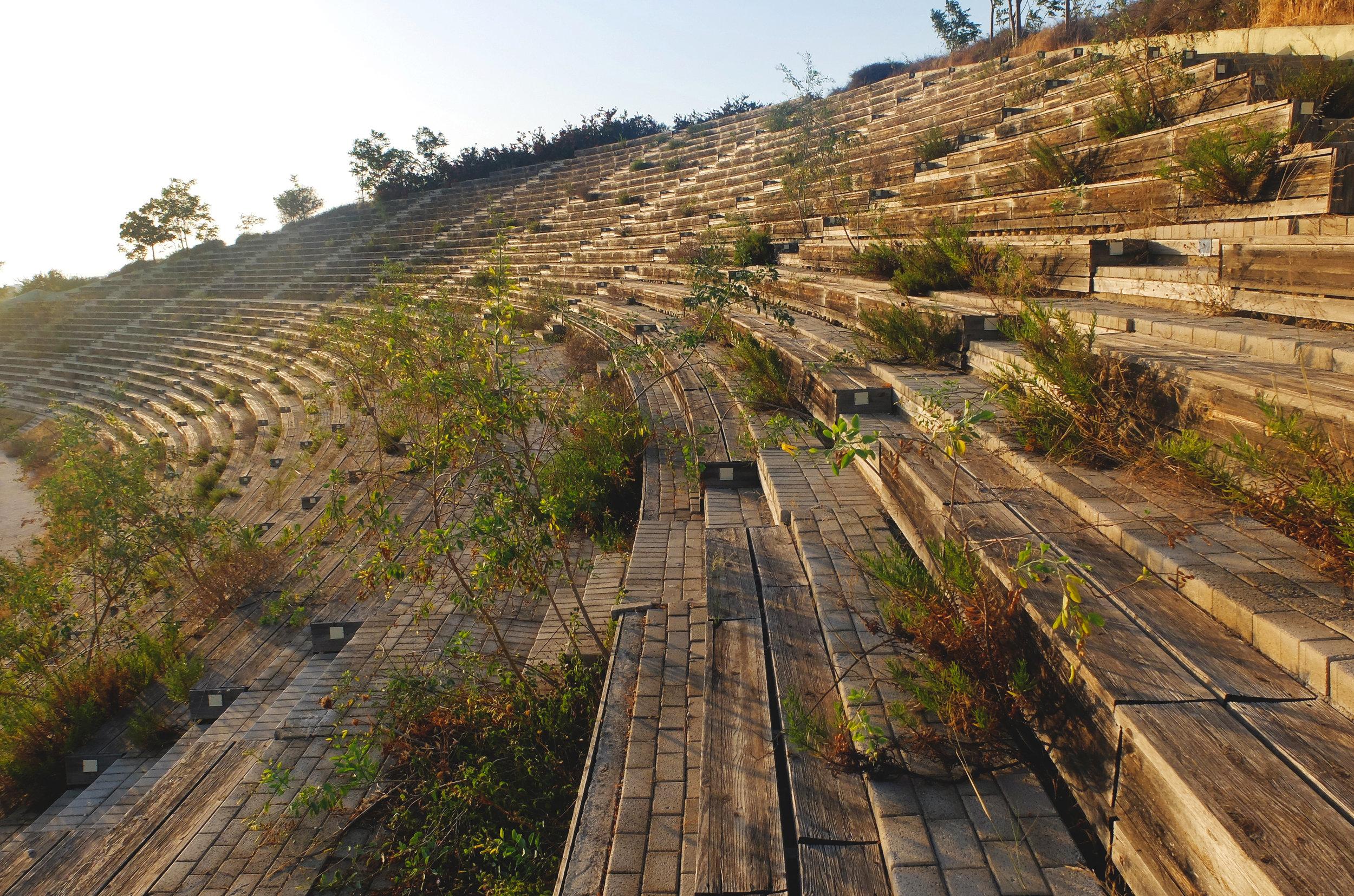 Athens Olympics 2004, Photo by Ioanna Sakellaraki