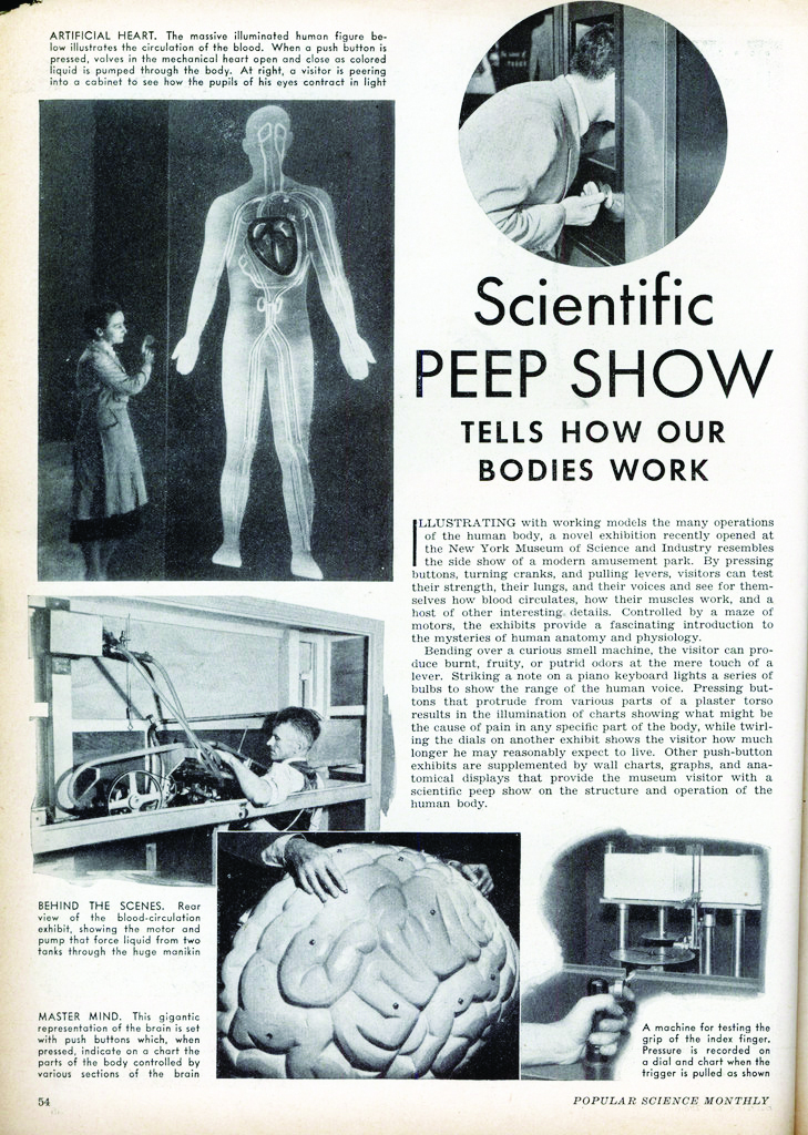 "Image 19 / ""Scientific Peep Show Tells How Our Bodies Work,"" Popular Science Feb. 1938: 54. Print"