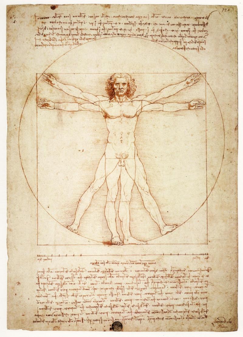 Image 20 / Leonardo da Vinci, Vitruvian Man, c. 1490. Pen and ink with wash over metalpoint on paper. Gallerie dell'Accademia, Venice, Italy