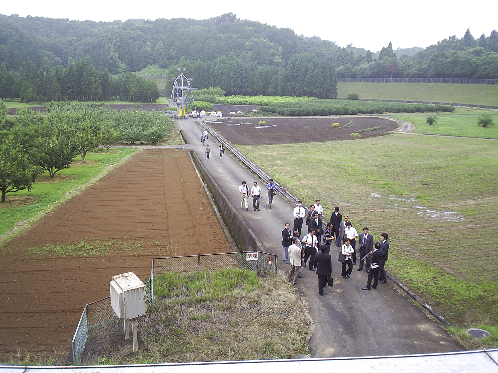 View toward the centre of the atomic garden field at the Institute of Radiation Breeding (IRB) in Hitachiohmiya, Japan, 2016. Photographs by Govinda Rizal