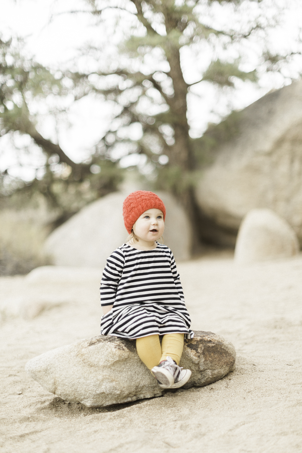Joshua-Tree-calgary-kids-photography-shop-the-skinny-4.jpg