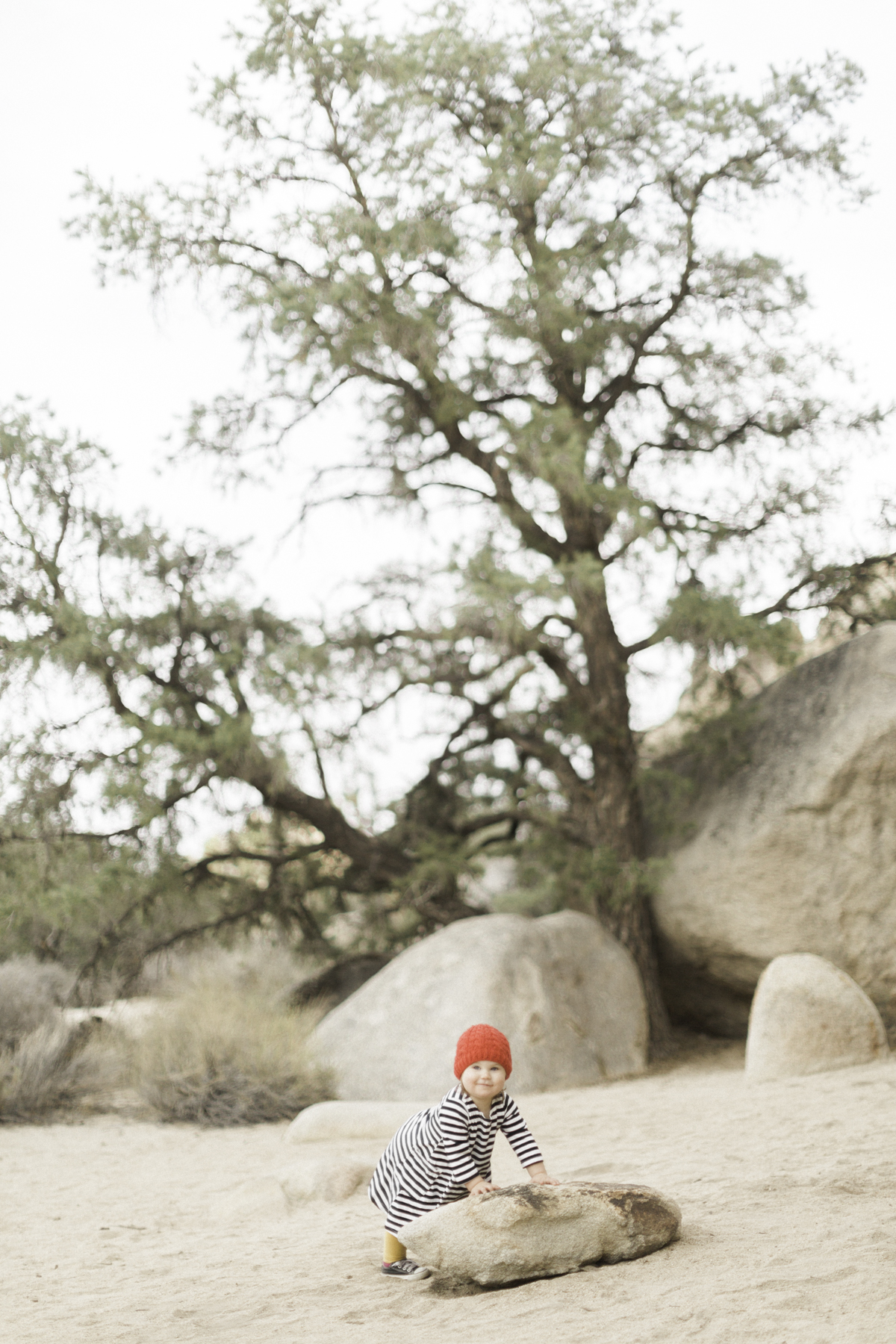 Joshua-Tree-calgary-kids-photography-shop-the-skinny-3.jpg
