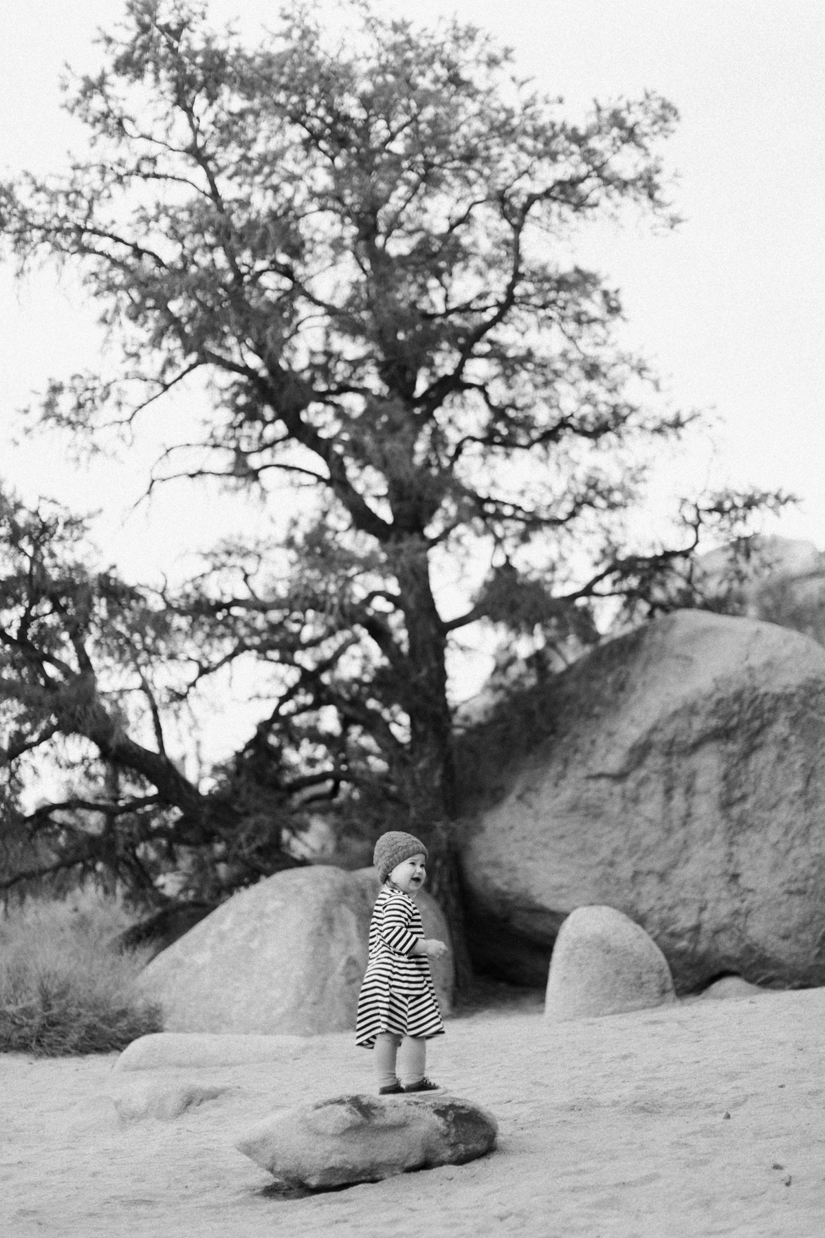 Joshua-Tree-calgary-kids-photography-shop-the-skinny-6.jpg