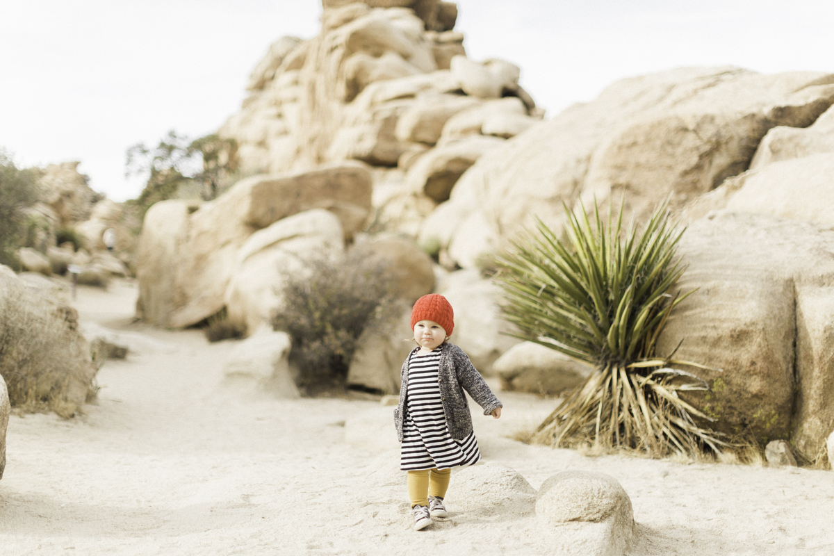 Joshua-Tree-calgary-kids-photography-shop-the-skinny-7.jpg