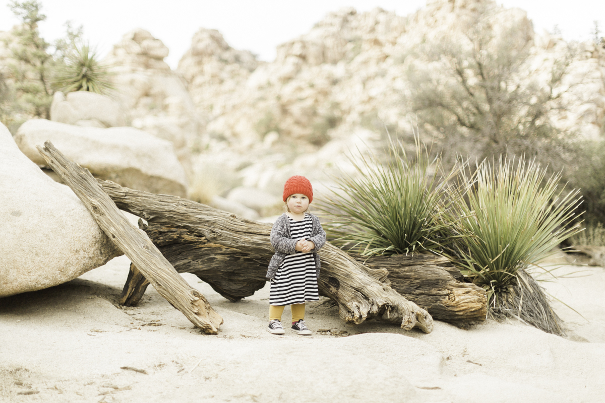 Joshua-Tree-calgary-kids-photography-shop-the-skinny-12.jpg