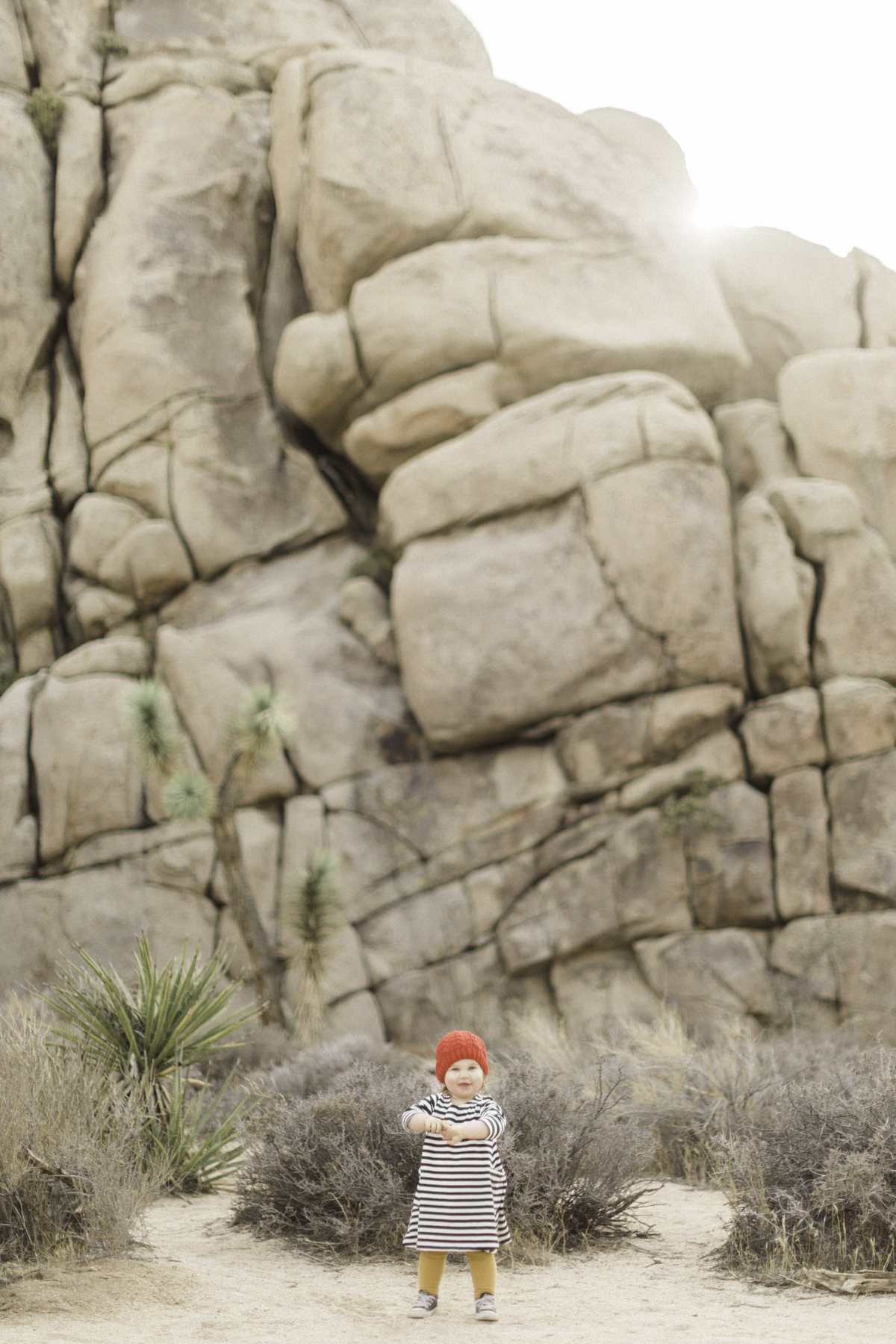 Joshua-Tree-calgary-kids-photography-shop-the-skinny-17.jpg