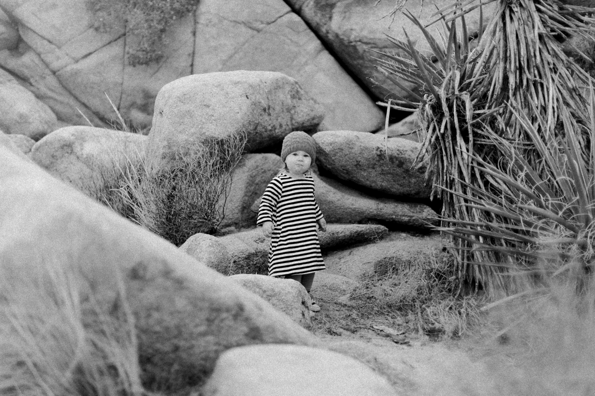 Joshua-Tree-calgary-kids-photography-shop-the-skinny-8.jpg