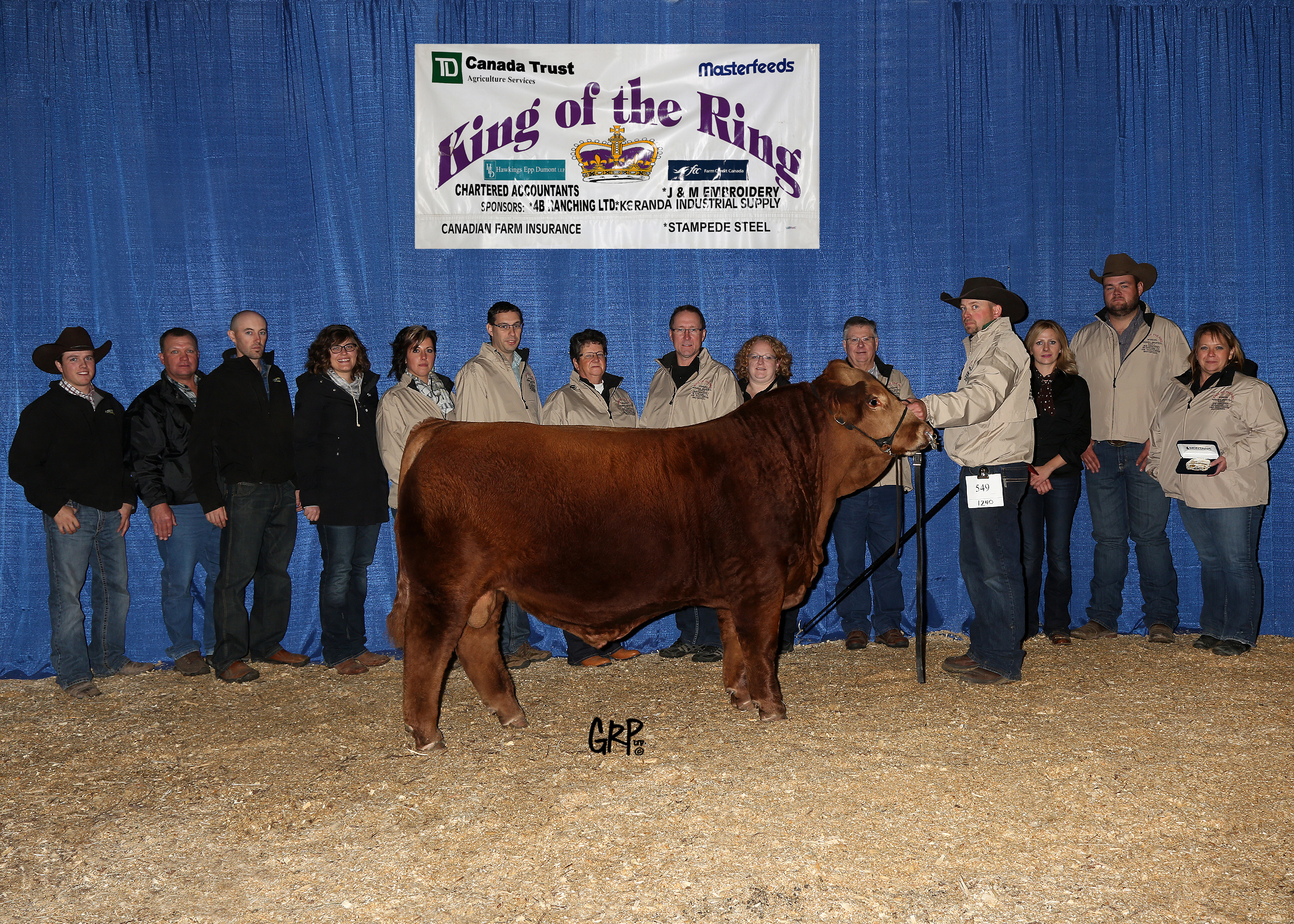 2015 Grand Champion King of the Ring - Simmental -  ERIXON SIMMENTALS INC