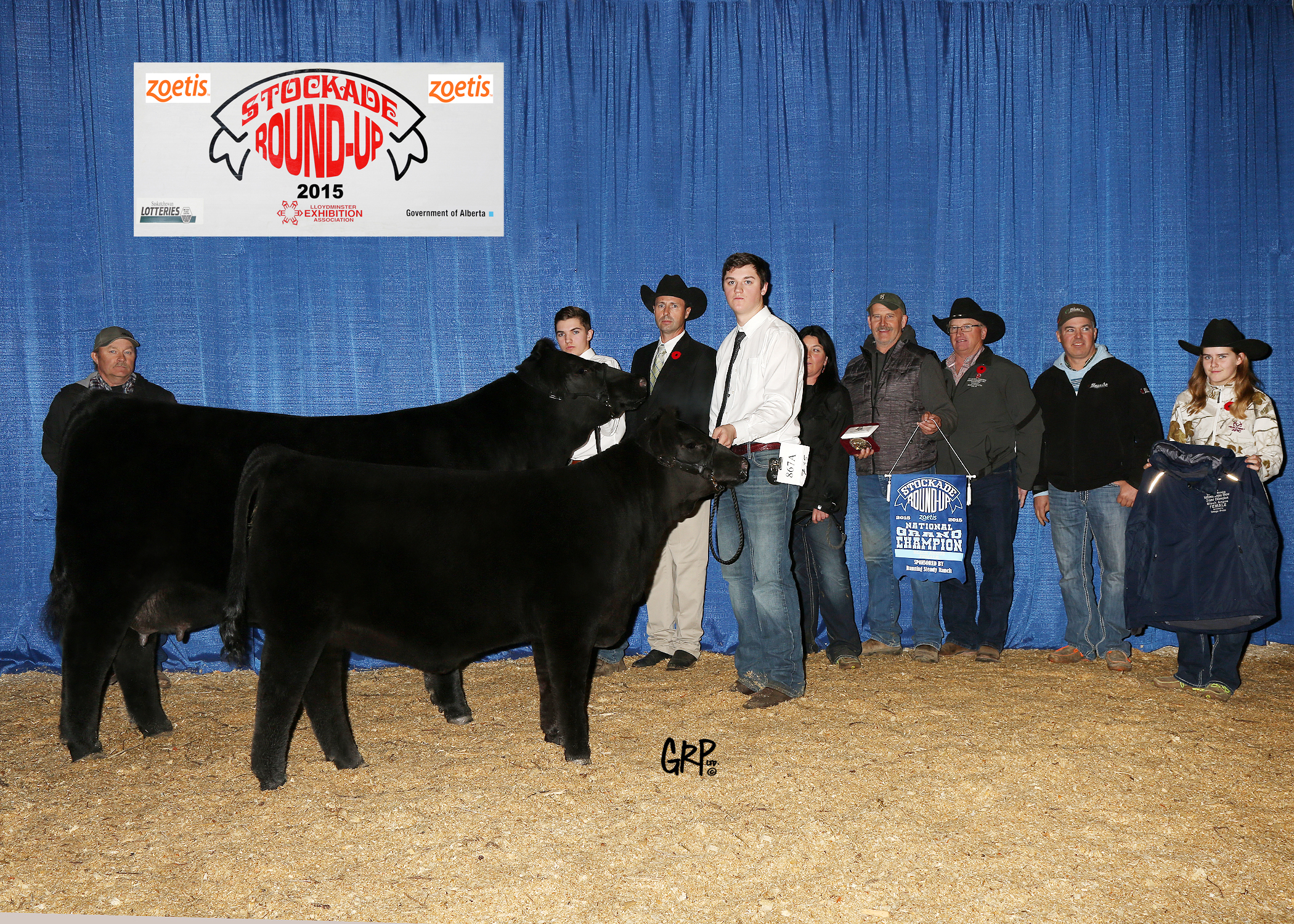 2015 Grand Champion Black Angus Female exhibited by  BLAIRSWEST LAND & CATTLE
