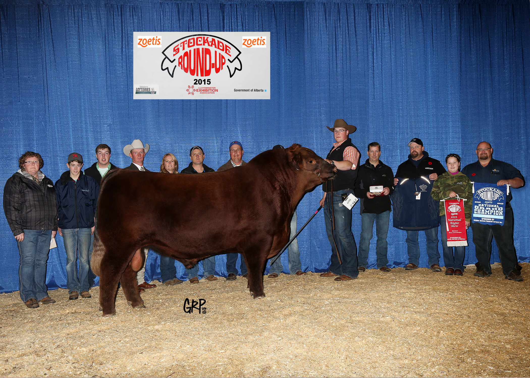 2015 Grand Champion Red Angus Bull exhibited by  REDRICH FARMS & WOOD COULEE RANCH