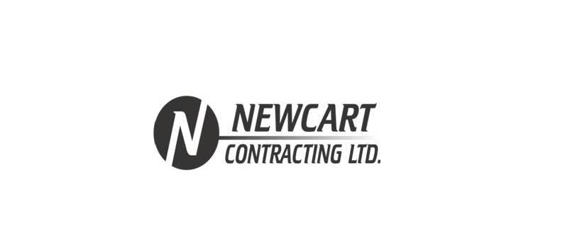 Newcart.JPG