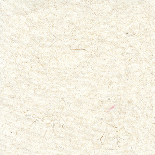I found this texture to give the drawing a paper-like look.
