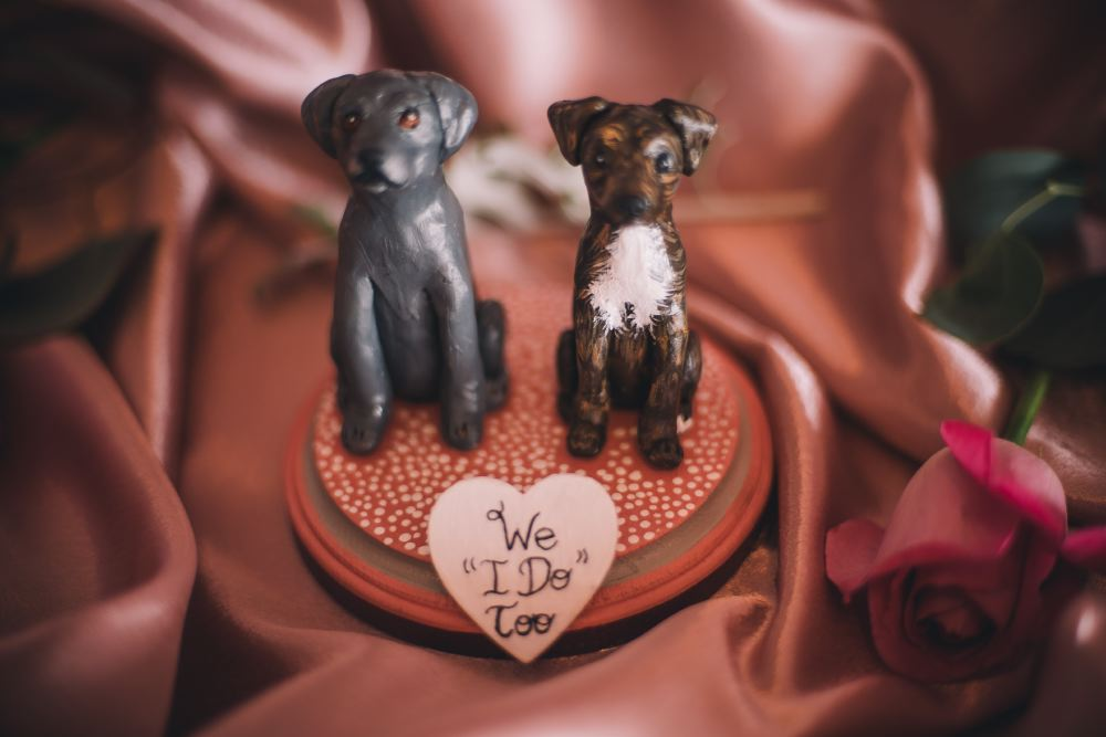 san   diego wedding photographer | cake topper of dogs