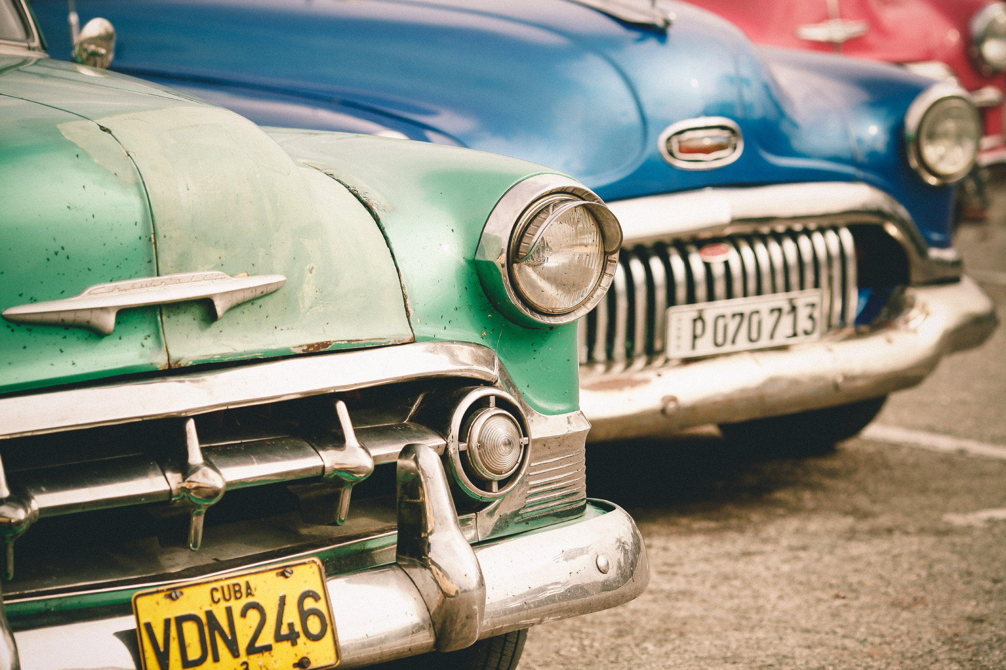 san diego wedding   photographer | view of vibrantly colored cars and their plate numbers