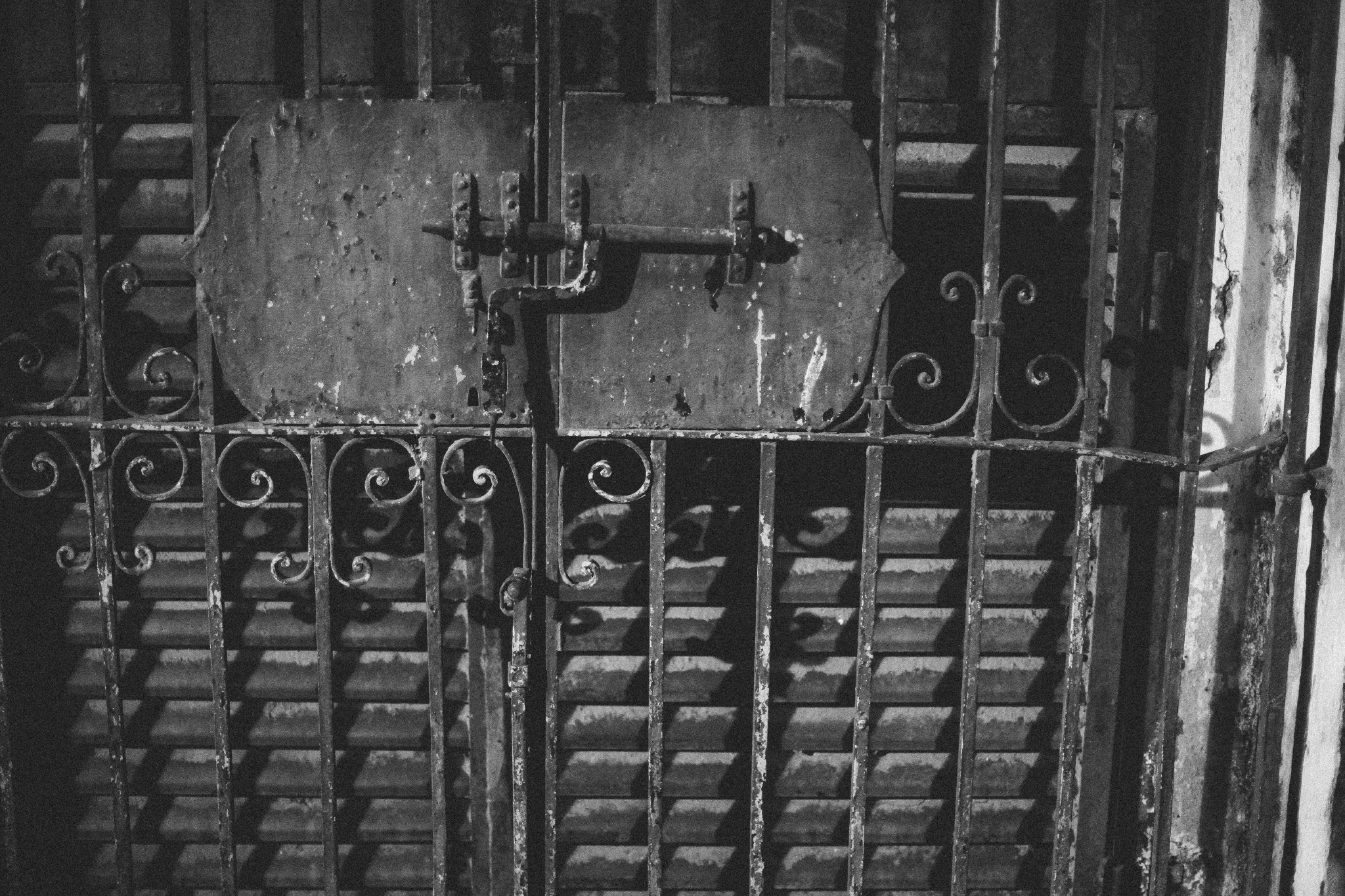 san diego wedding   photographer | monotone shot of metal gate