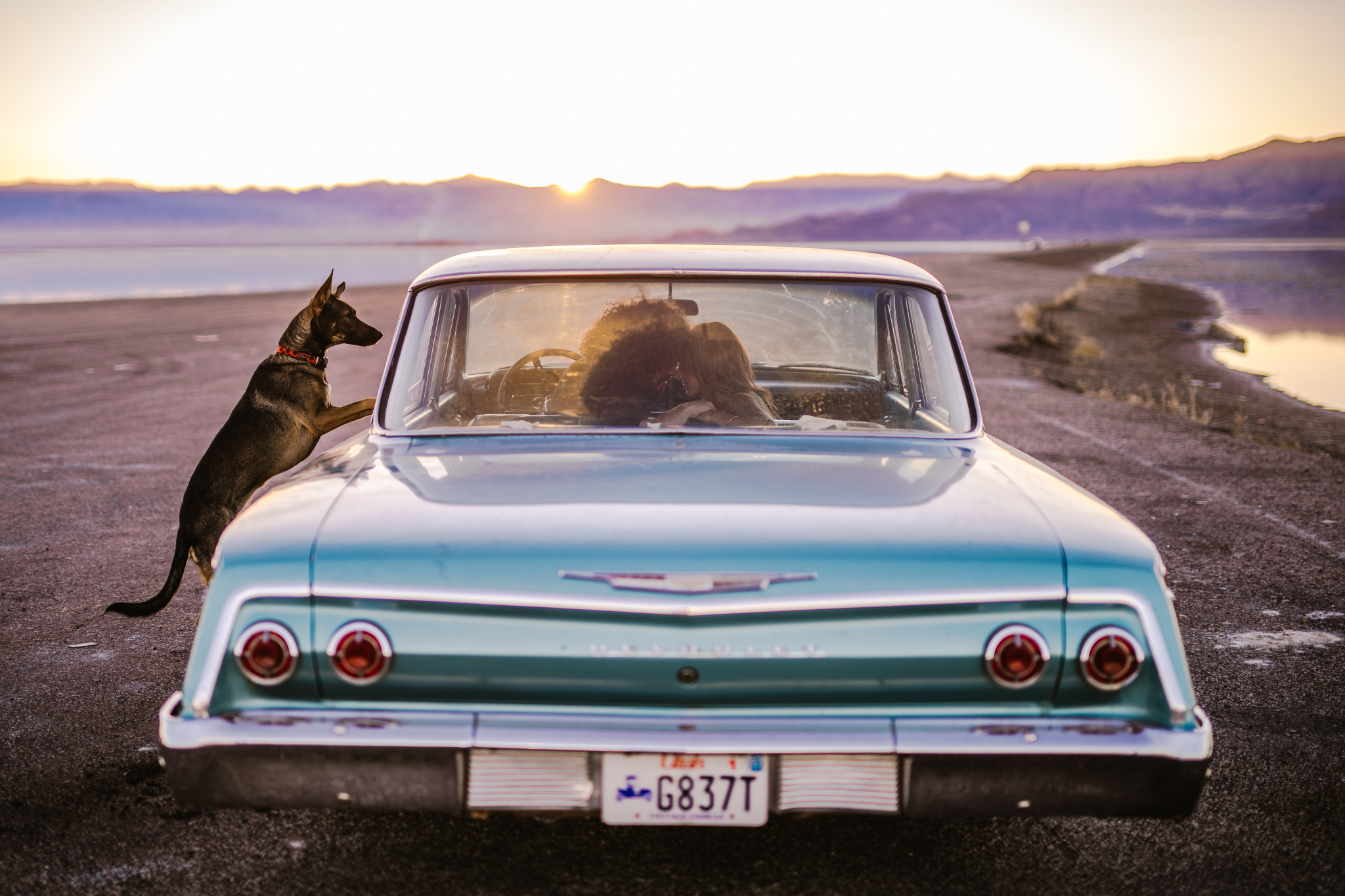 san diego wedding   photographer | couple in blue vintage car about to kiss and dog outside car   watching them