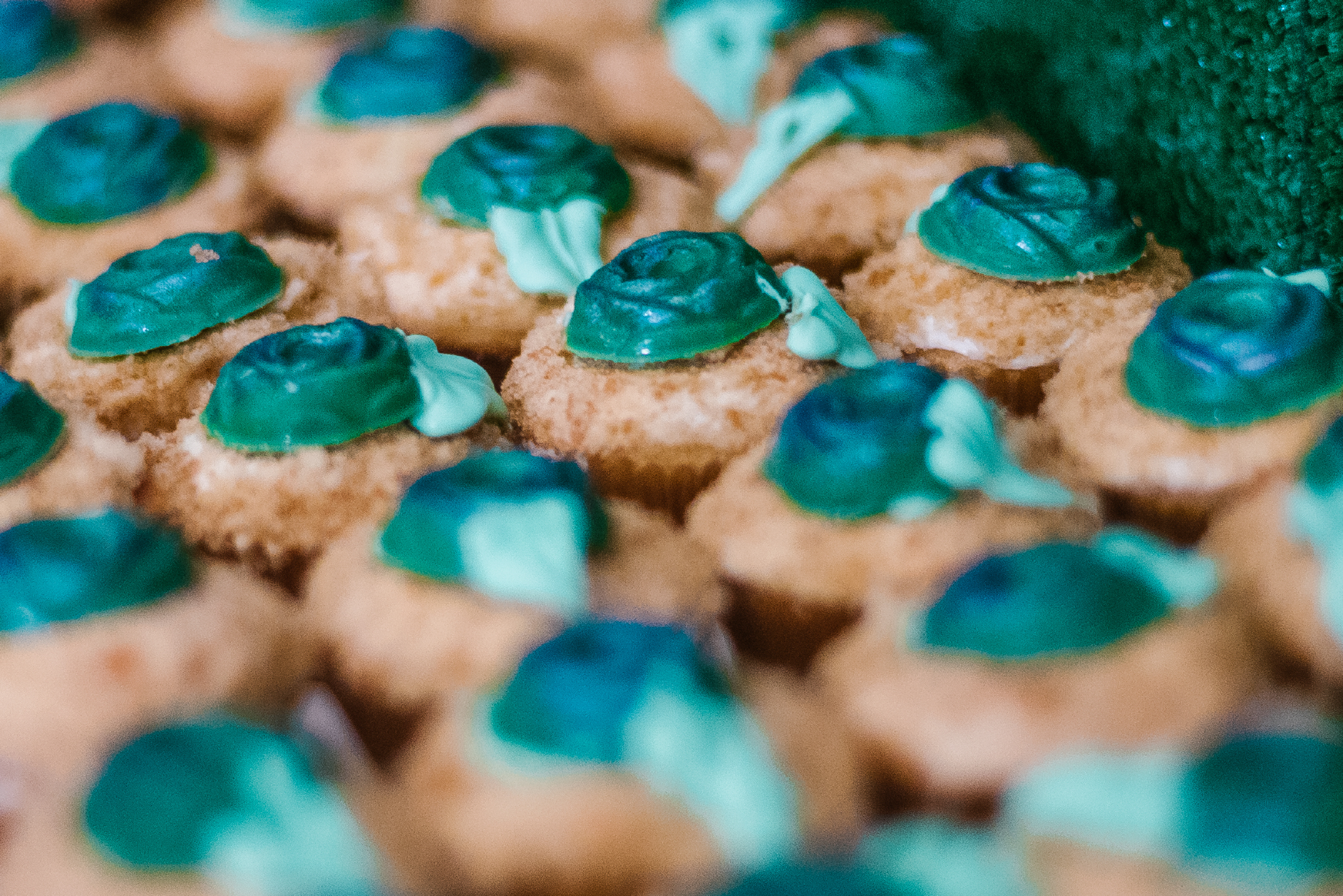 san diego wedding   photographer | closeup of blue desserts