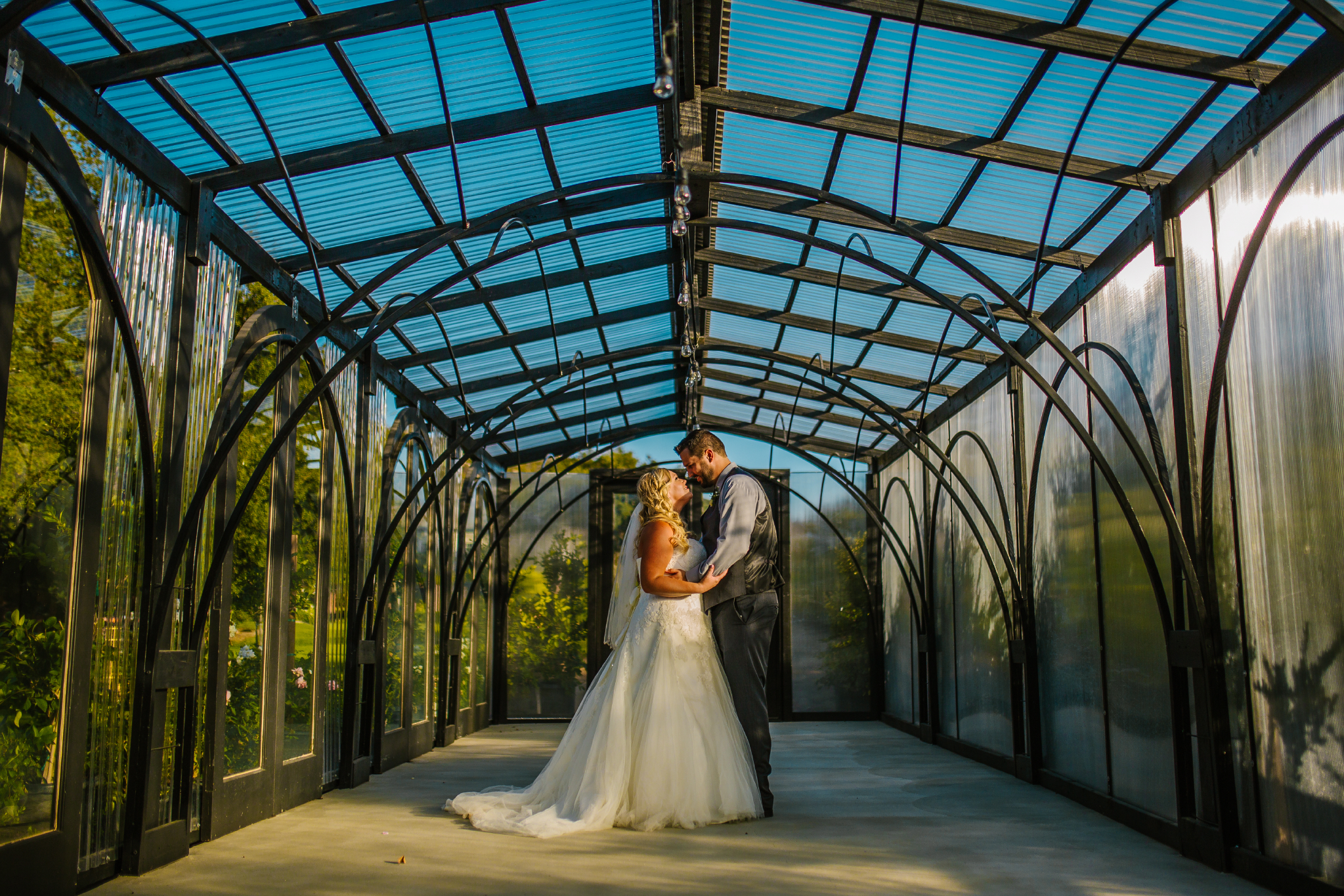 san diego wedding   photographer | man and woman holding each other in greenhouse