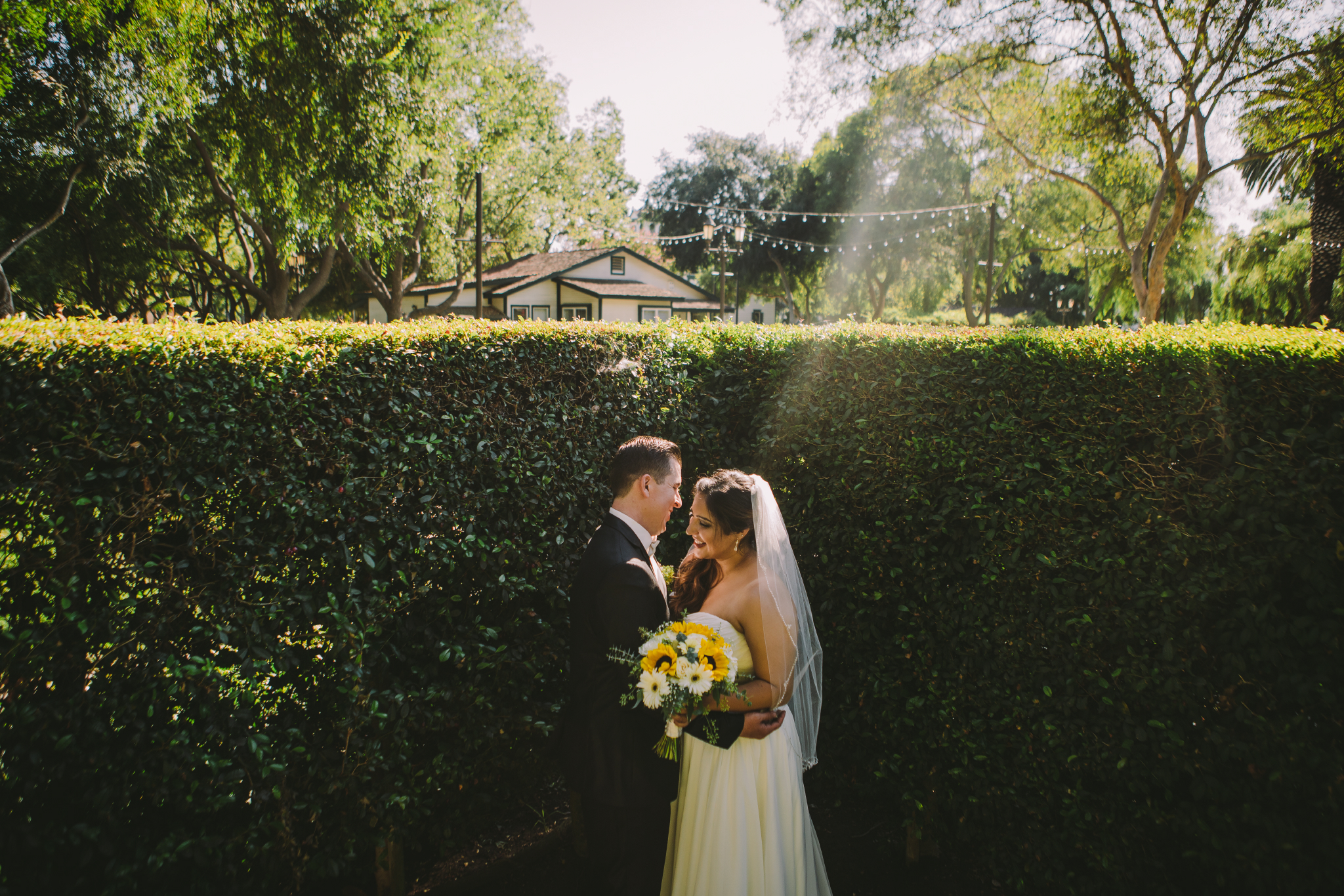 san diego wedding   photographer | couple in front of hedge