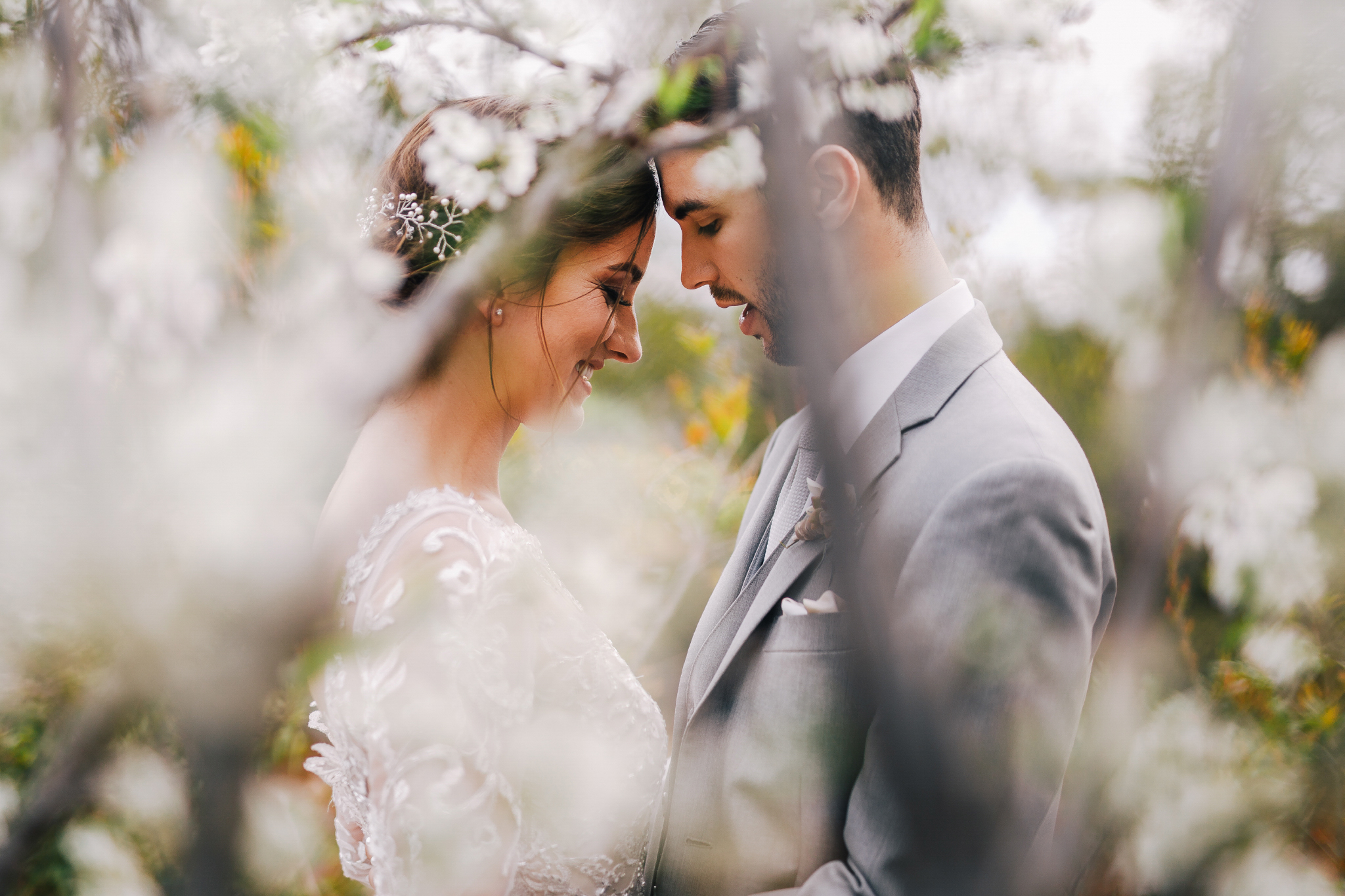 san diego wedding   photographer | groom in grey suit looking down to bride in white dress seen   through flowery branches