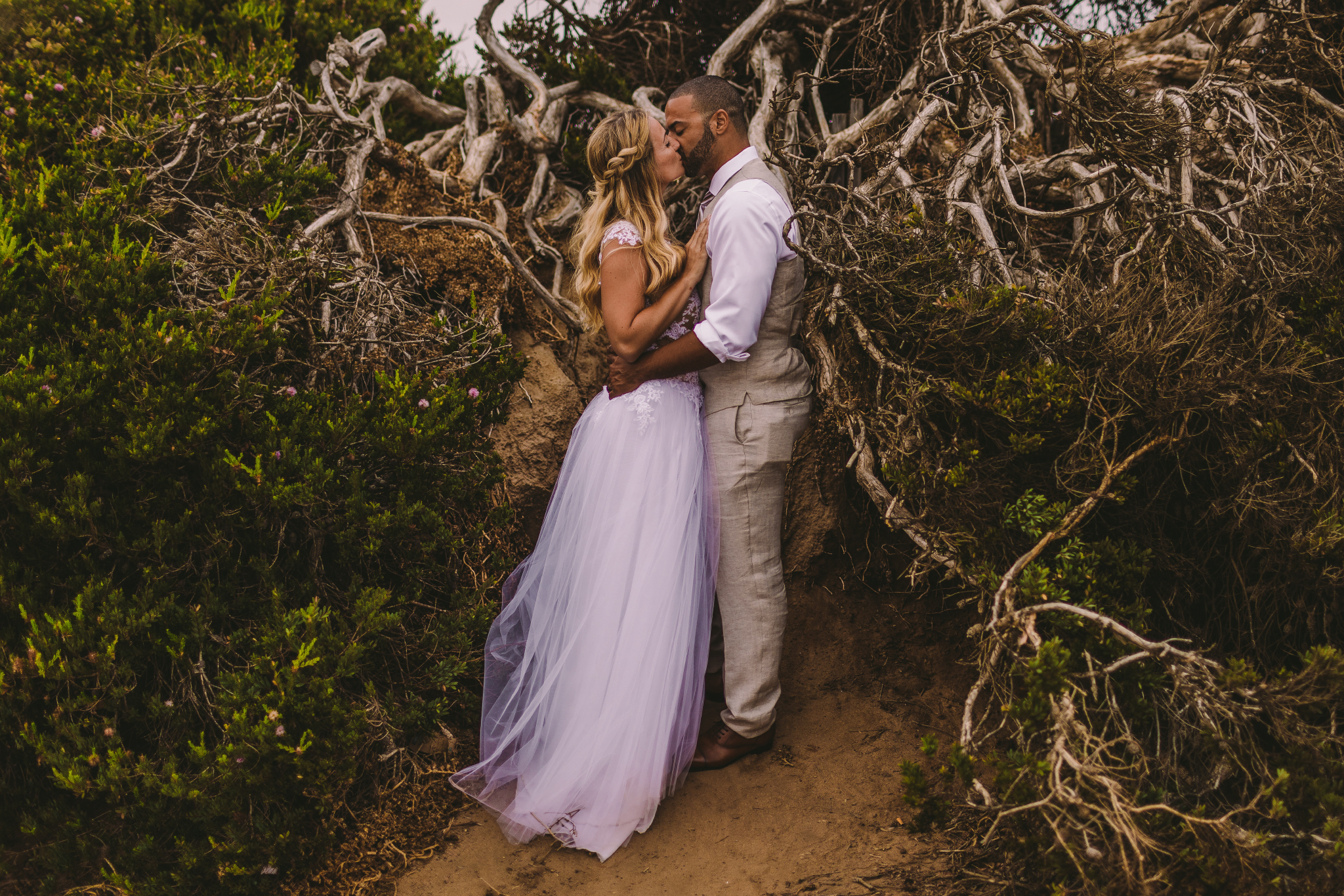 san diego wedding   photographer | married couple kissing by the uprooted tree