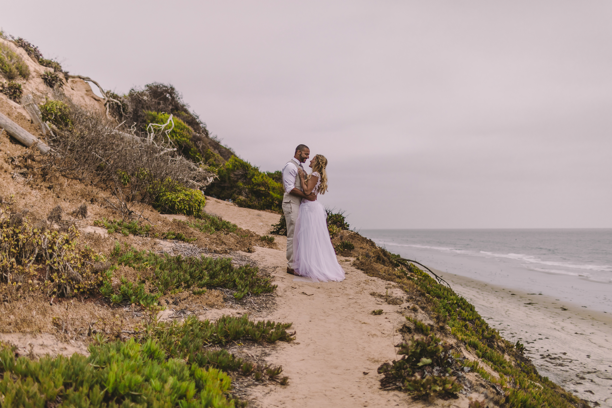 san diego wedding   photographer | married couple looking at each other standing by sea cliff   with uprooted tree behind them