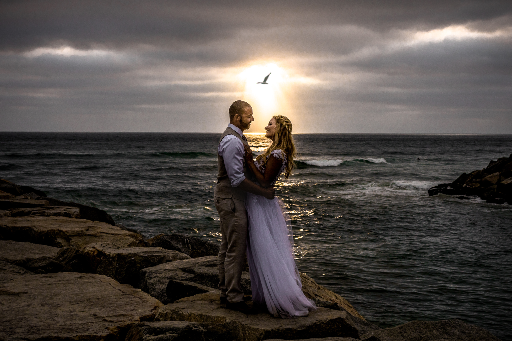 san diego wedding   photographer | married couple holding each other with bird flying overhead