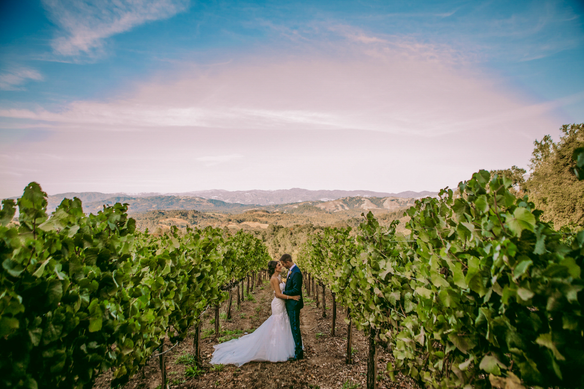 san diego wedding   photographer | married couple looking at each other in between rows of   plantation