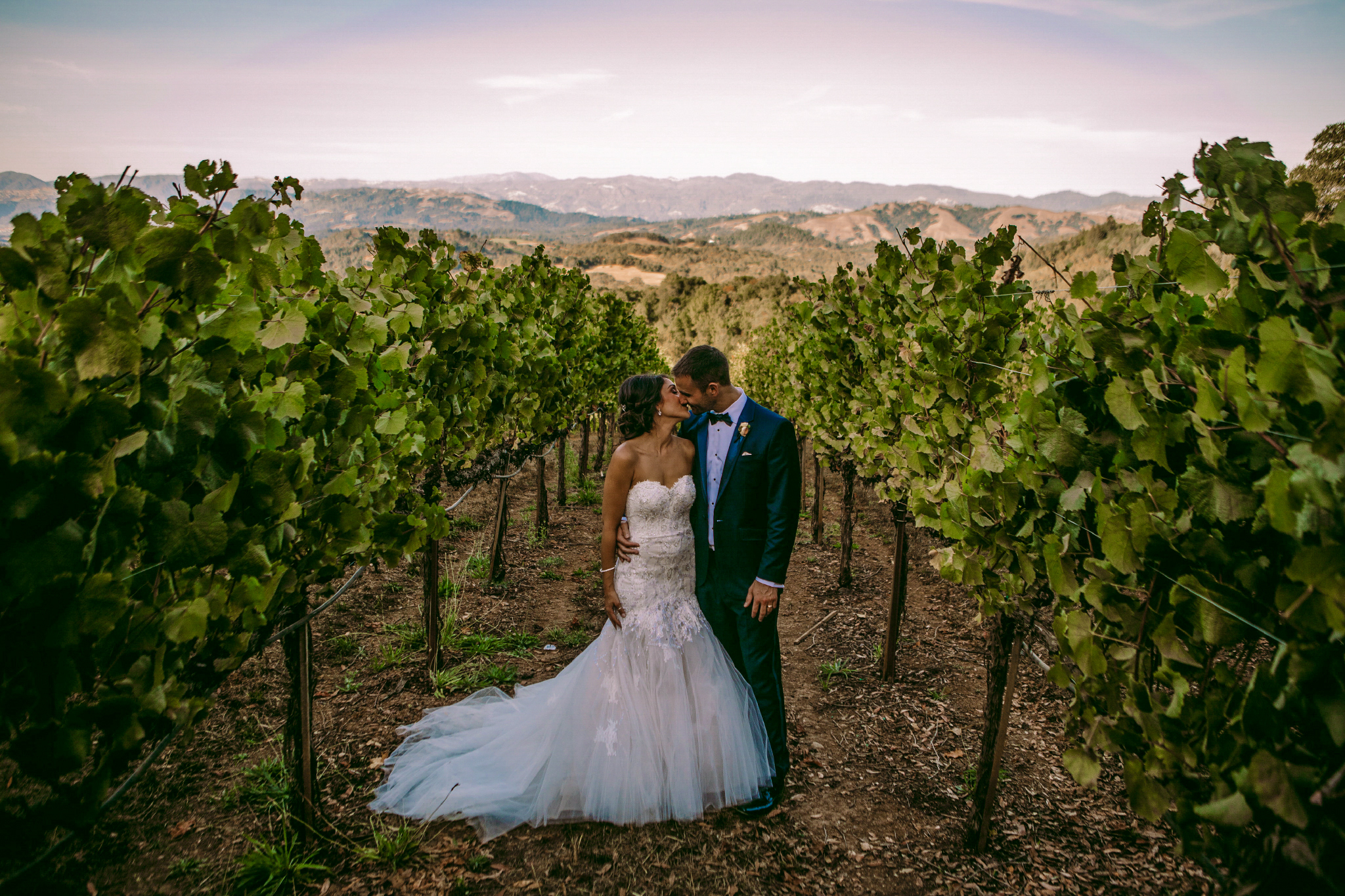 san diego wedding   photographer | groom holding bride from behind while standin in between rows   of plantation