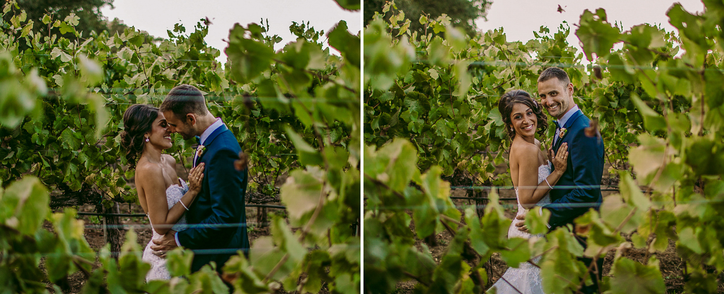 san diego wedding   photographer | collage of bride and groom seen through row of plantation