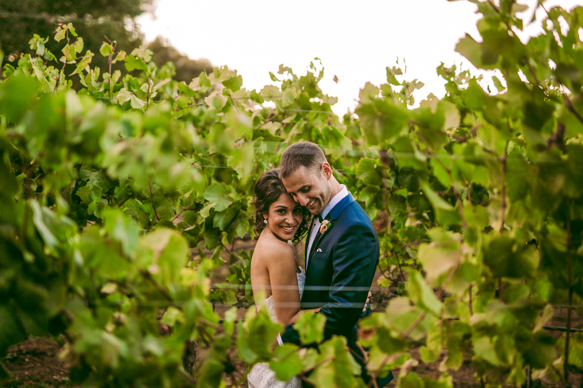 san diego wedding   photographer | groom holding bride from the front seen through plantation row