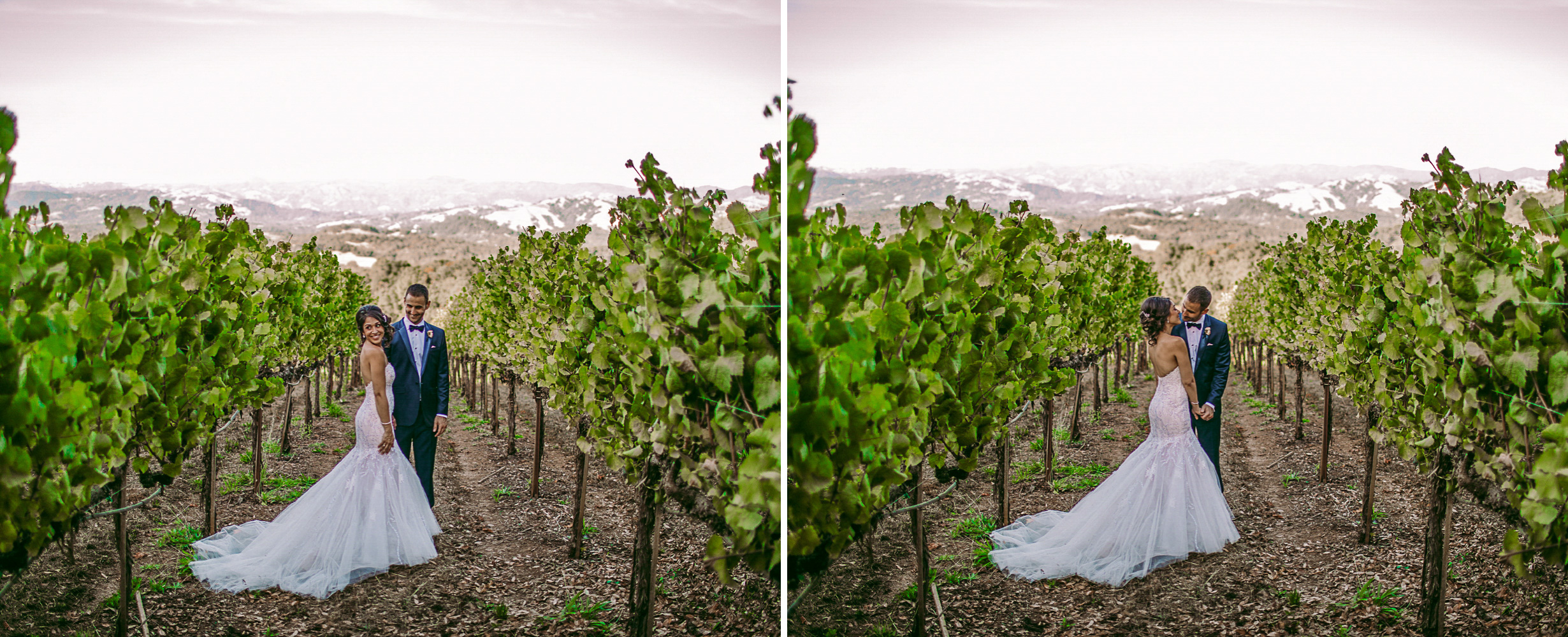 san diego wedding   photographer | collage of bride and groom standing in between rows of   plantation