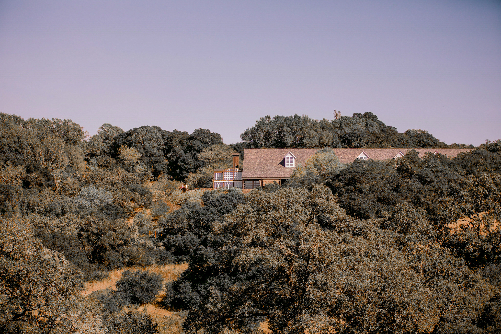san diego wedding   photographer | scenery of place filled with trees and with a house in view