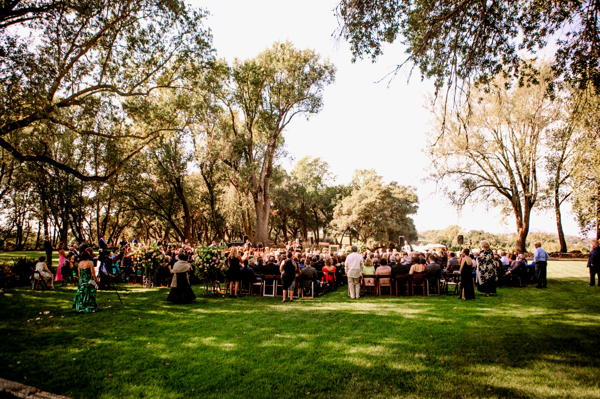 san diego wedding   photographer | outdoors shot of arrangement of people seated on chairs   looking away from camera
