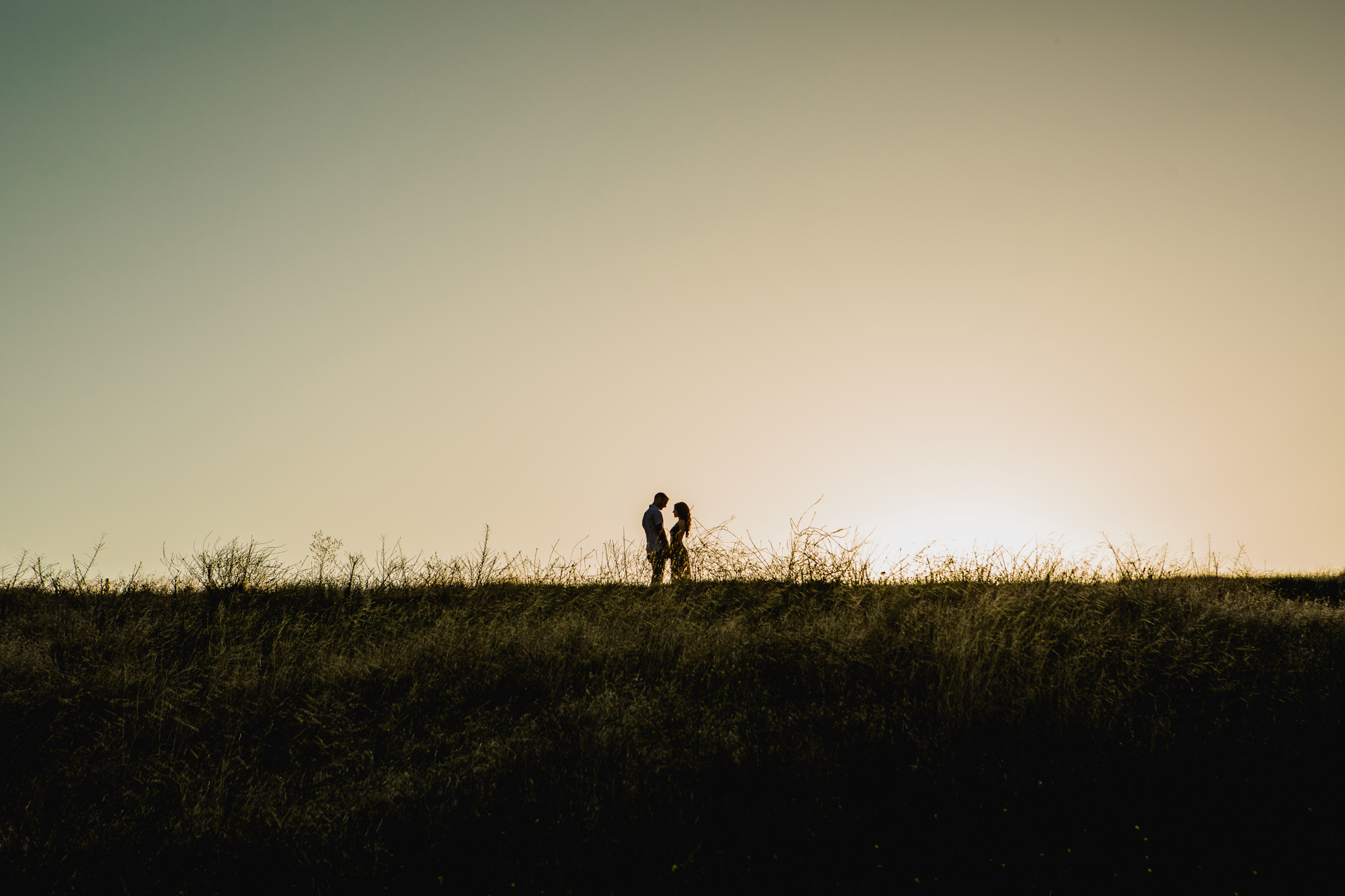 san diego wedding   photographer | silhouette of couple holding hands looking at each other in   grassy field