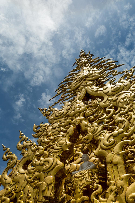 ChiangRai-Bog-3.jpg