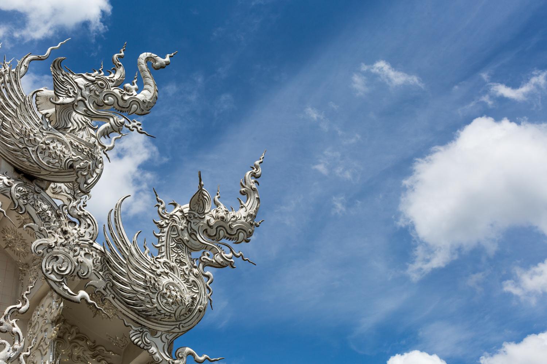ChiangRai-Bog-12.jpg