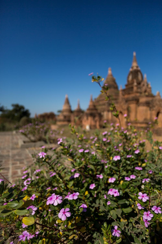 Blog-Myanmar-67.jpg