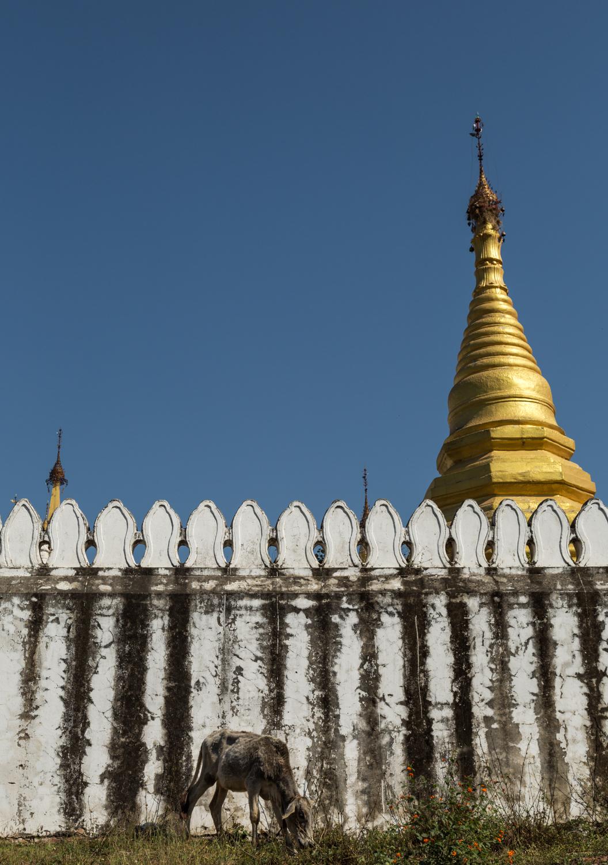 Blog-Myanmar-30.jpg