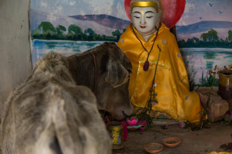 Blog-Myanmar-29.jpg