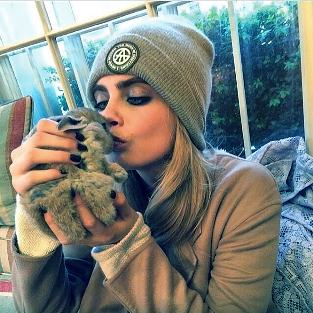 Cara Delevingne and her rabbit, Cecil